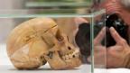Ein Schädel, den Deutschland an 2011 an Namibia zurückgab. Überreste von Verstorbenen bei Aufständen gegen die Kolonialherrschaft.