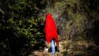 Gefährlicher Protest: ein Umweltaktivist in einem Regenwald in der Nähe einer chilenischen Mine.