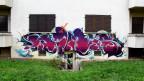 Der Schriftzug «Nims» in violetten Buchstaben auf eine Hausfassade gesprayt.