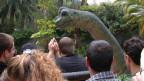 Einige Fans von «Jurassic Parc» drehen gerne FIlmszenen nach.