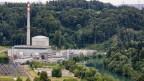Das Kernkraftwerk Mühleberg liegt im Grünen.