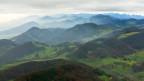 Waldlandschaft im Jura.