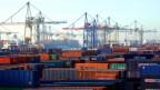 Der Hamburger Hafen soll gründer werden
