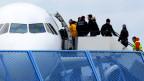 Asylbewerber werden in Sammelabschiebungen zurück in ihre Heimat gebracht.