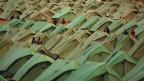 Foto eines Flüchtlincampes voll mit Zelten.