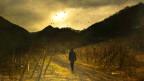 Beim spazieren kann man auch seine eigene Wahrnehmung schärfen.