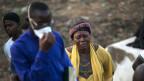Gerade bei Epidemien wie Ebola kann eine WHO die Katastrophe eindämmen.