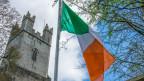 Irische Flagge vor der Old St Mary Cathedral in Limerick, Irland