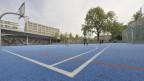 Der Basketballplatz der Dreirosenanlage