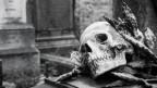 Die österreichische Kultur ist bekannt für ihre Morbidität.