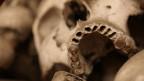 Ein Schädelknochen