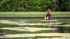 Frau sitzt an einem Teich und hält ihre Füsse ins Wasser