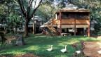 Siedlungen in Auroville
