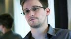 Das Porträt eines jungen Mannes mit Brille.