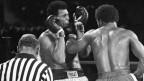 In der fünften Runde bekam er noch George Foremans Linke zu spüren, in der achten Runde siegte er: Muhammad Ali.