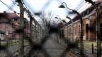 Sicht in das Konzentrationslager Auschwitz