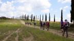 Die Pilger nach Rom auf einem Feldweg.