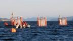 Die Meeresforscher isolieren mit diesen Röhren das Meerwasser im Fjord, um untersuchen, wie es auf den steigenden CO2-Gehalt in der Luft führt.