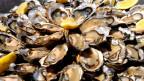 Präventiv Alzheimer vorbeugen mit Vitamin B. Austern beispielsweise sind reich an B12.