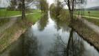 Vermeintlich saubere Schweizer Flüsse ...