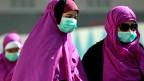 In den letzten Wochen erkrankten immer mehr Menschen am neuen Mers-Virus, vor allem auf der arabischen Halbinsel.