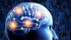 Das «Human Brain Project» soll das menschliche Gehirn am Computer simulieren.