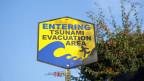 Warum war die Welle des verheerenden Tsunami von 2011 in Japan an manchen Stellen besonders hoch?