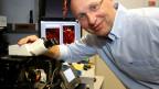 Für die Weiterentwicklung des Lichtmikroskops gab es den diesjährigen Chemie-Nobelpreis.