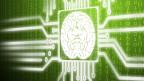 Mit dem «Human Brain Project» soll das menschliche Hirm am Computer simuliert werden können.