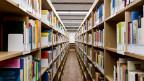 Wissenschaftliche Bücher in der Bibliothek der Universitaet Bern.