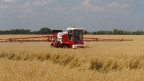 Glyphosat: ein umstrittenes Hilfsmittel in der Landwirtschaft.