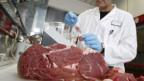 Fleisch im Labor