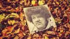Der Soundtrack zum Herbst im «SRF 3 Pop Routes»