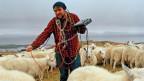 Pictish Trail: Beschäftigt sich nicht nur mit Musik