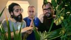 Das Sounds!-Team kämpft sich mit euch durch den undurchsichtigen Dschungel der neuen Musik