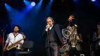 Stephan Eicher & Traktorkestar standen am 27.07.19 wegen eines Künstlerausfalls unverhofft sogar zwei Mal auf der Bühne des Paléo Festivals. Ganz zur Freude der Fans und der Band.