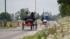 Zwei offene Kutschen von hinten mit Amischen drin.