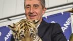 Der tschechische  Milliardär und Führer der ANO 2011 Bewegung Andrej Babis mit einem Tigerbaby am 26. Oktober 2013.