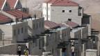 Trotz Protest der UNO und der USA baut Israel im Westjordanland sogar mehr Wohnungen als bisher geplant. Jüdische Siedlung östlich von Jerusalem.