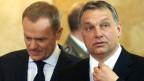 Ungarns Premier Viktor Orban (rechts), hier mit seinem polnischen Amtskollegen Donald Tusk.