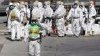 Arbeiter beim Reaktor Nr. 4 im AKW Fukushima.