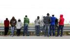 Flüchtlinge, auf Sizilien gestrandet.