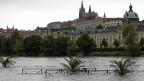 Die Moldau in Prag am 2. Juni - nach tagelangen starken Regenfällen.