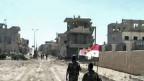 Assads Truppen tragen zum Zeichen ihres Sieges über die Rebellen eine syrische Fahne durch Qusair.
