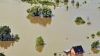 Fischbeck, von der Elbe überflutet.