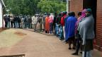 Warteschlange vor einem Wahllokal in einem Aussenquartier der Hauptstadt Harare.
