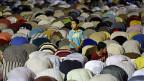 Anhänger Mohammed Mursis beim Gebet in Nasr City, einem Aussenquartier Kairos.