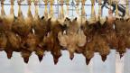 Welteit starben knapp 1000 Menschen an der Lungenkrankheit SARS. Darauf wurde in der Schweiz das alte Epidemiengesetz aus dem Jahre 1970 umgeschrieben. Bild: Tote Hühner in einem chinesischen Schlachthaus.