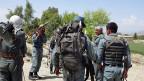 Die Mission der Polizei: Mohnfelder zerstören.