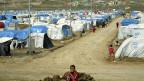 Flüchtlingslager Domiz im Norden Iraks. Eigentlich sollte es 2000 Flüchtlingen aus Syrien Platz bieten; es sind längstens viel mehr.